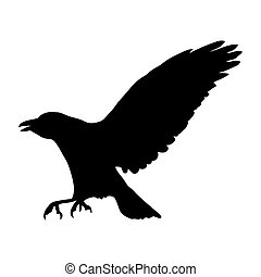 vector silhouette of raven
