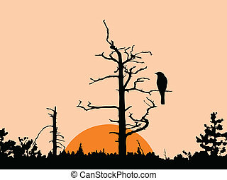 vector silhouette of the bird on dry tree