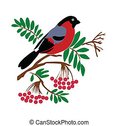 vector silhouette of the bullfinch on white background