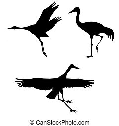 vector silhouette of the cranes on white background