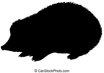 vector silhouette of the hedgehog on white background