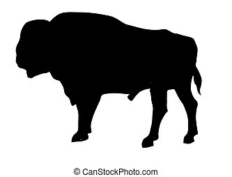 vector silhouette of the oxen on white background