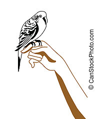 vector silhouette of the parrot on hand