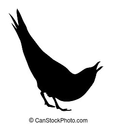 vector silhouette of the sea gull