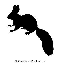 vector silhouette of the squirrel