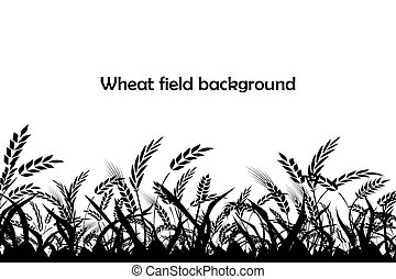 Vector silhouette of wheat. Silhouette. Wheat in the field.
