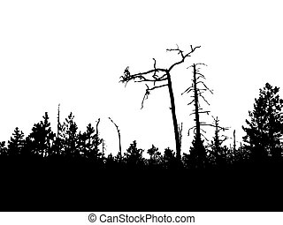 vector silhouette old wood