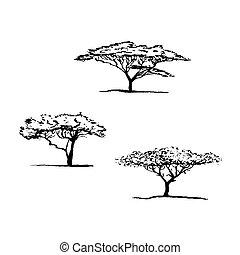 vector, silhouette, set., boompje, boom., afrikaan, acacia
