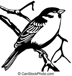 vector silhouette sparrow on white background