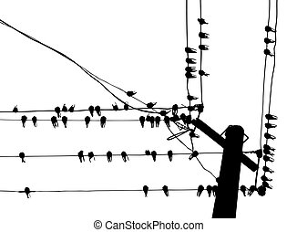 vector silhouette swallow on wire