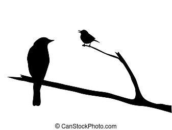 vector, silhouette, van, de, vogel, op, tak