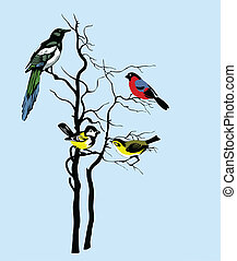 vector, silhouette, van, de, vogels, op, boompje