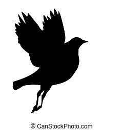 vector, silhouette, vliegende vogels, op wit, achtergrond