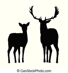 Vector silhouettes of deer and hind, isolated on a white...
