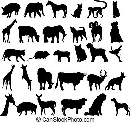 Vector silhouettes of differente an
