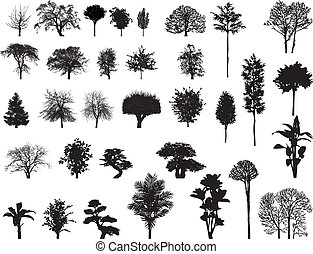 vector silhouettes of trees