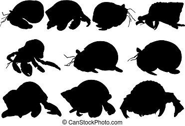 vector, silueta, cangrejo, ilustración, ermitaño