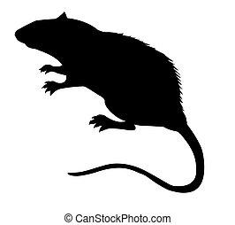 vector, silueta, de, el, rata, blanco, plano de fondo