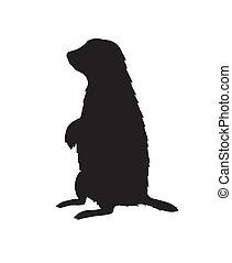 vector, silueta, negro, marmota, marmota