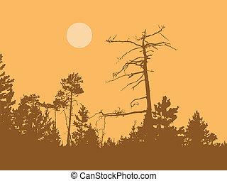 vector, silueta, seco, árbol, en, salvaje, madera