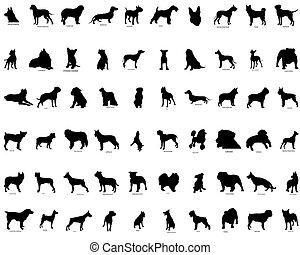 vector, siluetas, de, perros