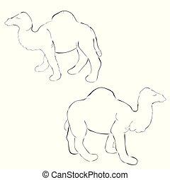 simple 2 outline sketch camel