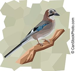 Vector simple illustration of jay bird. - Vector simple...