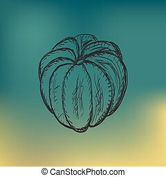 Pumpkin vector sketch vegetable icon  Pumpkin vegetable
