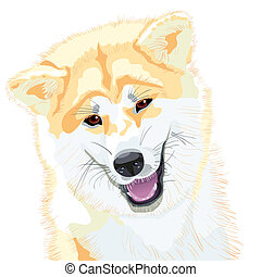 vector sketch Akita Inu Japanese Dog smiles - color sketch,...