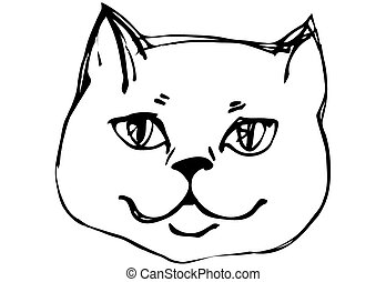 vector sketch beautiful cat muzzle