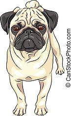 vector sketch cute dog pug breed - color sketch cute serious...