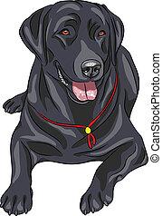 vector sketch dog breed Labrador Re - smiling black gun dog ...