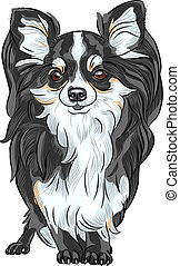 vector sketch dog Chihuahua breed smiling - color sketch of ...