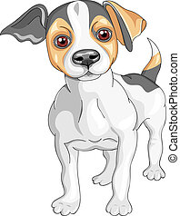 vector sketch dog Jack Russell Terrier breed - color sketch...
