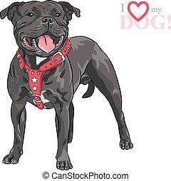 vector sketch dog Staffordshire Bull Terrier breed - sketch ...