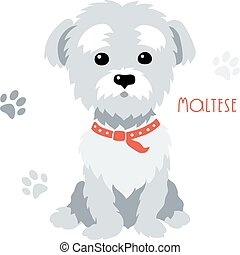 Vector sketch funny maltese dog sitting