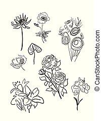 vector sketch illustration design elements plant doodle flowers
