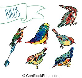 Vector sketch of bird,set