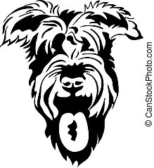 vector black and white sketch of schnauzer closeup, isolated on white background
