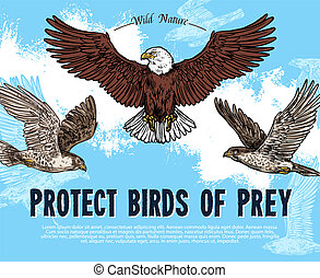 Vector sketch poster for birds of prey protection - Protect...