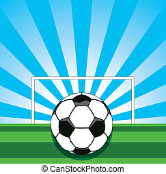 vector soccer ball on the field
