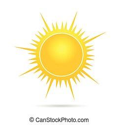 vector, sol, ilustración, uno, parte, amarillo