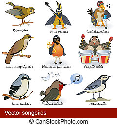 vector songbirds