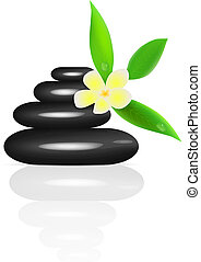 Vector spa stones and frangipani isolated on white...