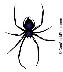 Vector. Spider