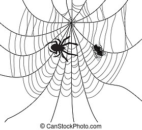 vector spider, web and a caught fly