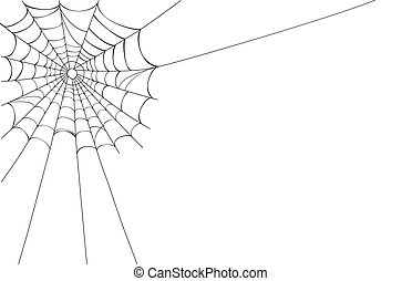 Vector Spider web on white - Creepy spider web in the...