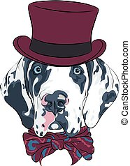 vector spotted dog Great Dane breed - Vector spotted dog...