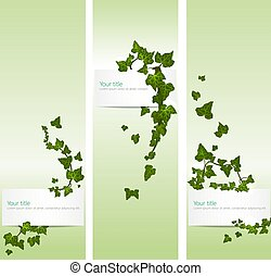 Vector spring banners with ivy