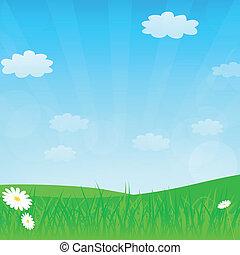 Vector spring or summer background